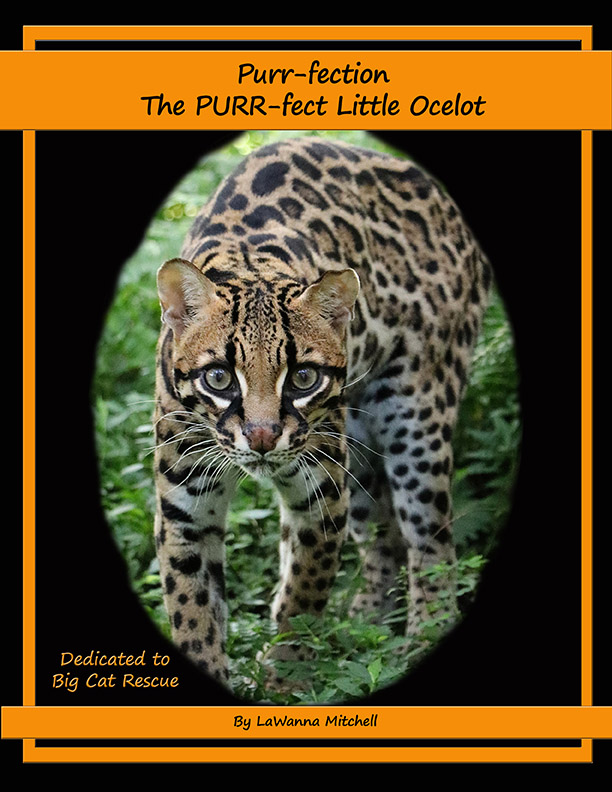 Purr-fection Ocelot