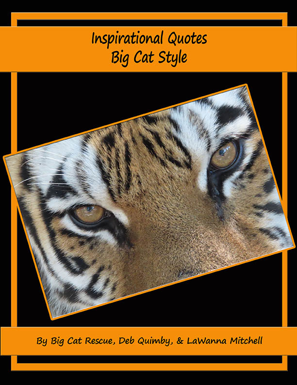 101 Inspiring Quotes Big Cat Style V5
